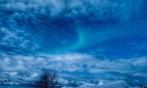 Lapponia norvegese, due esperienze da non perdere